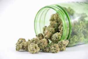 大麻の画像